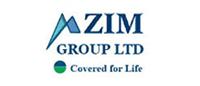 Zim-logo-small