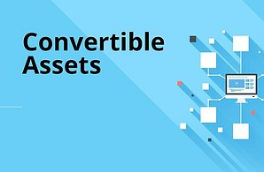Convertible Assets Link Building